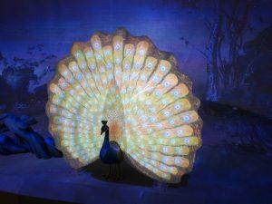 故宮郎世寧新媒體藝術展 「穿真透時-畫孔雀開屏」裝置